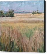 Ochlockonee Marsh Canvas Print by Pam Talley