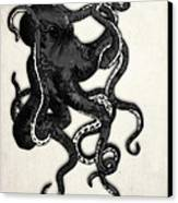 Octopus Canvas Print by Nicklas Gustafsson