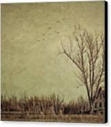 Old Rural Farmhouse With Grunge Feeling Canvas Print by Sandra Cunningham