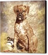 Old Time Boxer Portrait Canvas Print by Angie Tirado-McKenzie