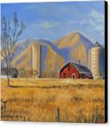 Old Vineyard Dairy Farm Canvas Print by Jeff Brimley