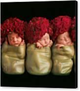 Olivia, Alice, Hugo, Imogin-rose & Mya As Roses Canvas Print by Anne Geddes