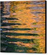 Orange Sherbert Canvas Print by Donna Blackhall