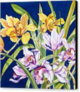 Orchids In Blue Canvas Print by Lucy Arnold