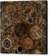 Organic Forms Canvas Print by Frank Tschakert