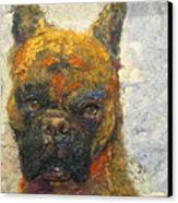 Oscar The Boxer Canvas Print by Karla Kriss