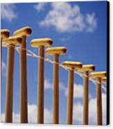 Paddles Hanging In A Row Canvas Print by Joss - Printscapes