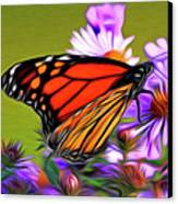 Painted Butterfly Canvas Print by David Kehrli