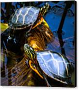 Passing The Day With A Friend Canvas Print by Bob Orsillo