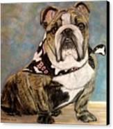 Pastel English Brindle Bull Dog Canvas Print by Patricia L Davidson