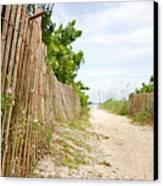 Path To The Beach Canvas Print by Matt Tilghman