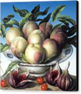 Peaches In Delft Bowl With Purple Figs Canvas Print by Amelia Kleiser