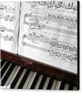 Piano Keys Canvas Print by Carlos Caetano