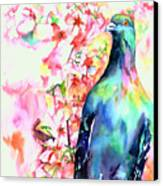 Pigeon Eye Canvas Print by Christy  Freeman