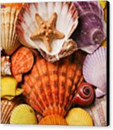 Pile Of Seashells Canvas Print by Garry Gay