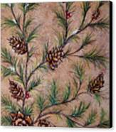 Pine Cones And Spruce Branches Canvas Print by Nancy Mueller