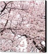 Pink Cherry Blossom Tree Canvas Print by Ariane Moshayedi