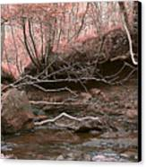 Pink Forest Canvas Print by Svetlana Sewell