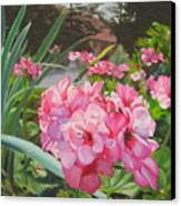 Pink Geraniums Canvas Print by Lea Novak