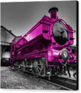 Pink Pannier  Canvas Print by Rob Hawkins