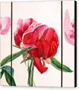 Pivoines Canvas Print by Muriel Dolemieux