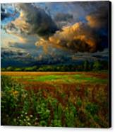 Places In The Heart Canvas Print by Phil Koch