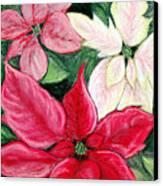 Poinsettia Pastel Canvas Print by Nancy Mueller