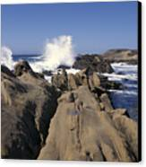 Point Lobos Seascape 3 Canvas Print by Stan and Anne Foster