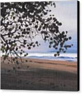 Pools Beach Canvas Print by Sarah Lynch