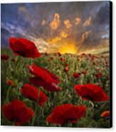 Poppy Field Canvas Print by Debra and Dave Vanderlaan