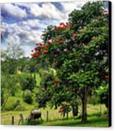 Pretty Countryside Canvas Print by Kaye Menner