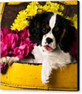 Puppy In Yellow Bucket  Canvas Print by Garry Gay