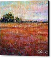Quiet Over The Field Canvas Print by Peter R Davidson