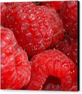 Raspberries Canvas Print by Mark Platt