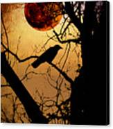 Raven Moon Canvas Print by Bill Cannon