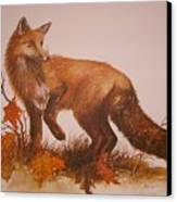 Red Fox Canvas Print by Ben Kiger