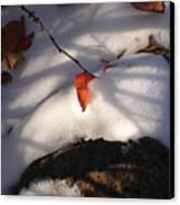 Red Leaf Canvas Print by Marilynne Bull