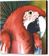 Red Parrot Canvas Print by Anthony Burks Sr