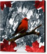 Red Wild Bird Canvas Print by Debra     Vatalaro