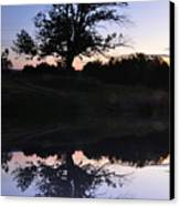 Reflecting Tree Canvas Print by Bill Cannon