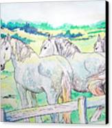Resting Giants Canvas Print by Jenn Cunningham