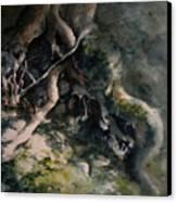 Revealed Canvas Print by Rachel Christine Nowicki