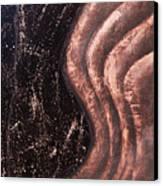 Reverberation Canvas Print by Bojana Randall