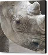 Rhinoceros Canvas Print by Tom Mc Nemar