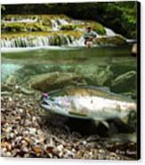 River Chrome Canvas Print by Alex Suescun