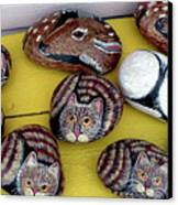 Rock Cats And Fawns Canvas Print by Barbara Griffin