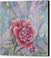 Rose Canvas Print by Laura Laughren