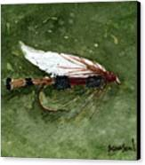 Royal Coachman Wet Fly Canvas Print by Sean Seal