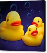 Rubber Duckies Canvas Print by Tom Mc Nemar