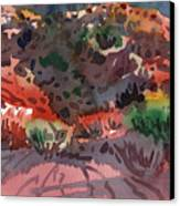Sagebrush Canvas Print by Donald Maier